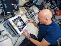 Microbes can mine rare earth elements in space